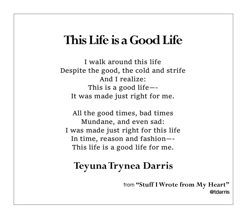 This Life is a Good Life by Teyuna T. Darris.jpg