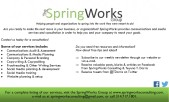 SpringWorks Consulting Flyer 1